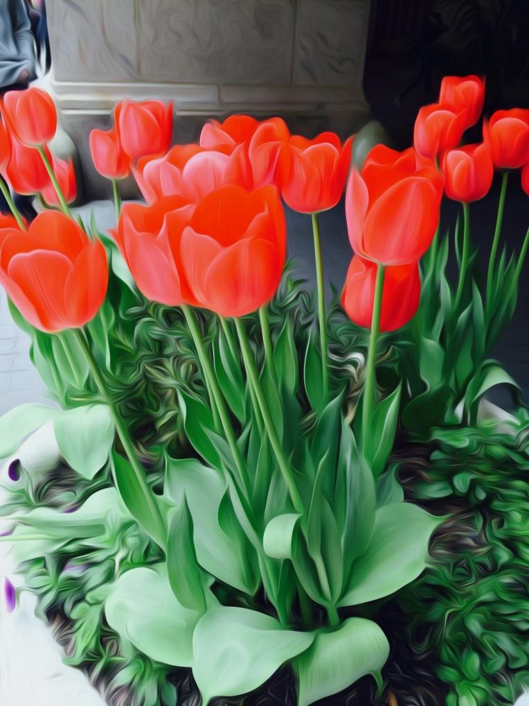tulip painting